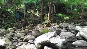 Up Los Banos Botanical Garden The Rocky Banks Of The Molawin Same River Flowing Through The