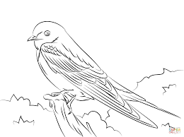 barn swallow coloring page free printable coloring pages