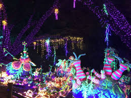zoo lights houston 2017 dates houston zoo staff makes sure zoo lights fun agrees with animal