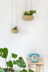 15 best house plants and planters images on pinterest house