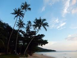 review pine bungalow in krabi klong muang beach