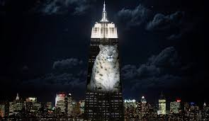 empire state building lights tonight it s brutal out there 7 refreshing water parks you should visit