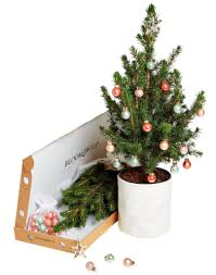 real mini tree trees to sendreal gift send