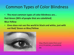 Human Color Blindness By Brianna Kearney And Juliet Ruhe Ppt Video Online Download