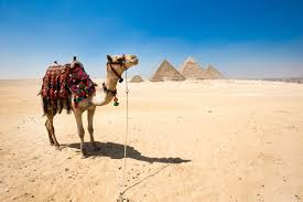 Is it safe to travel to egypt traveling to egypt