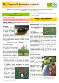chambre agriculture alsace bsv zna n 4 du 18 mai chambre d agriculture alsace