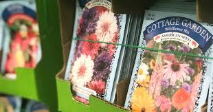 flower seed packets get ready for at dollar tree grab 25 flower seed packets
