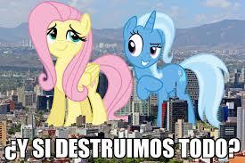 Trixie Meme - fluttershy y trixie meme mlp pinterest fluttershy meme and mlp