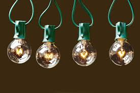 Clear Globe String Lights Outdoor by String Lights With 25 G40 Clear Globe Bulbs By Deneve Ul Listed