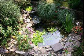 Small Garden Ponds Ideas Backyard Small Backyard Ponds New Backyard Pond Ideas Fresh