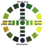 anatomy of green color science of colour