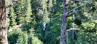 Backyard Zip Line Without Trees by 4 Are Kids Allowed To Zip Without An