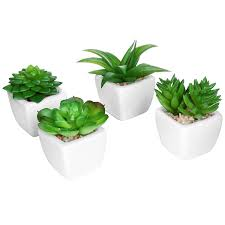 Fake Plants Home Depot The 10 Best Artificial Plants To Use By Your Swimming Pool