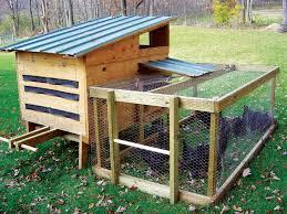 Backyard Chicken Coop Ideas Chicken Coop Ideas Cheap Diy Backyard