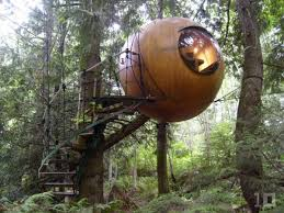 tree house hotel in canada free spirit spheres tree house
