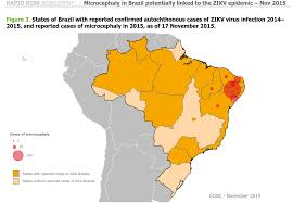 Brazil Map States by Healthcare Crisis Is A Catalyst For Brazil U0027s Downfall U2013 Falcon