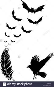 raven feather with flying halloween bats vector stock vector art