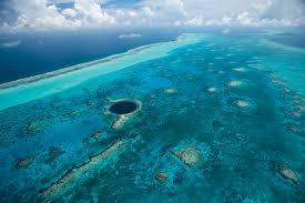 belize barrier reef barrier reef belize belize reef adventures