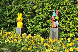 keukenhof flower gardens keukenhof gardens exploring keukenhof tulip gardens