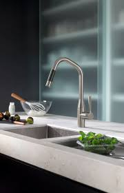 Kitchen Faucets Seattle by 45 Best Dornbracht Kitchen Images On Pinterest Kitchen Faucets