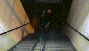 Sliding Down A Banister Gif Dog Slides Down Stairs On Its Stomach Gifrific