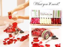 where can i buy petals bulk petals to bring to your wedding day