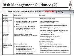 risk description template management plan
