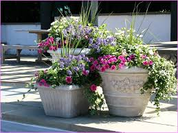 Design Flower Pots Big Flower Pot Designs Interior Design Ideas