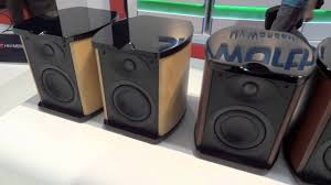 swans home theater ces 2012 swan speakers stand youtube