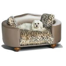 Leopard Chaise Lounge Dog Chaise Lounge U2013 Bankruptcyattorneycorona Com