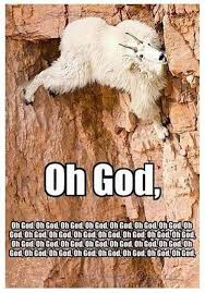 Rock Climbing Memes - wtf 09