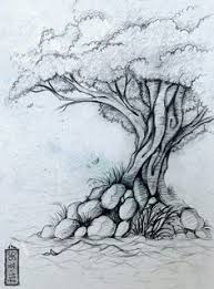 drawn tree artistic pencil and in color drawn tree artistic