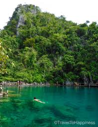 holiday in palawan the most beautiful island in the world