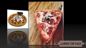 pizza dog bed 50 world s coolest dog beds a collection of crazy cool dog beds