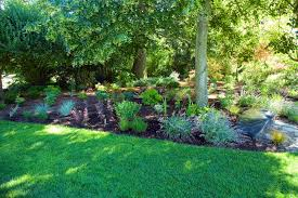 Rock Garden Bellevue Best Bellevue Botanical Garden Bellevue Washington State Bellevue