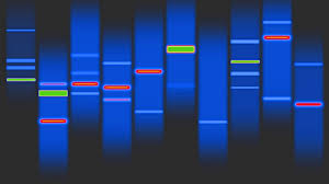 dna mapping dna hd 4k b roll istock