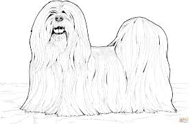 lhasa apso dog coloring page free printable coloring pages