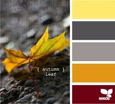 Autumn Color Schemes 10 Color Palettes And Hex Codes Perfect For The Autumn Fall
