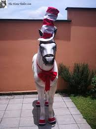 Cat In The Hat Costume The Cat In The Hat Costume The Horse Tailor
