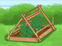 how to trellis cucumbers home decorating interior design bath