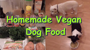 Homemade Plant Food by Homemade Dog Food Recipe Vegan Plant Based Youtube