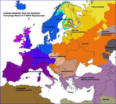 genetic map ethno genetic map of europe groupings based on y dna haplogroups