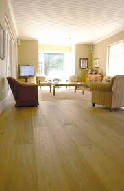 Laminated Wooden Flooring Cape Town The Barefoot Basics Of Wooden Floors Visi