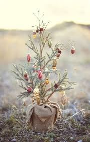 2456 best tree decorating images on