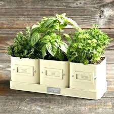 indoor windowsill planter kitchen herb pots kitchen herb planter herb garden planter ideas
