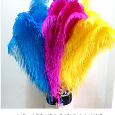 Where To Buy Ostrich Feathers For Centerpieces by Popular Ostrich Feathers Mix Buy Cheap Ostrich Feathers Mix Lots