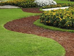 Backyard Ground Cover Ideas 40 Remarkable Backyard Grass Ideas
