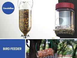 clean the house and make a bird feeder