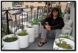 7 location ideas for apartment and urban gardening urban gardens nyc