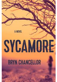 O U0027s Top 20 Books To Read This Summer Sycamore